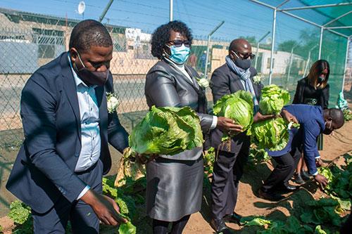 'A garden at every school'