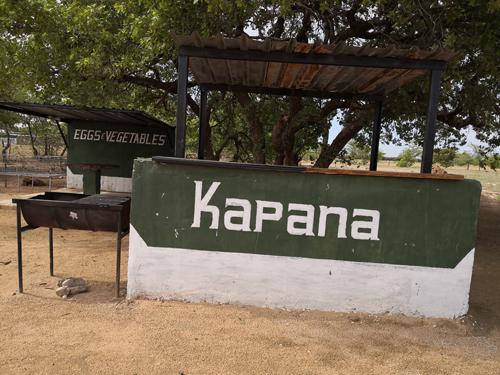 Kapana vendors hit hard by FMD outbreak