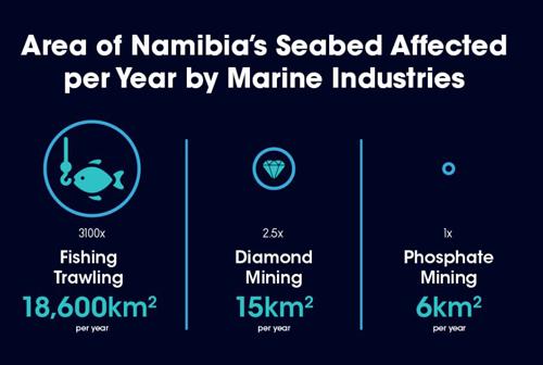Phosphate mining will not disturb economy – Chamber