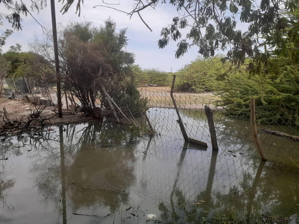 Flowing sewage shuts school
