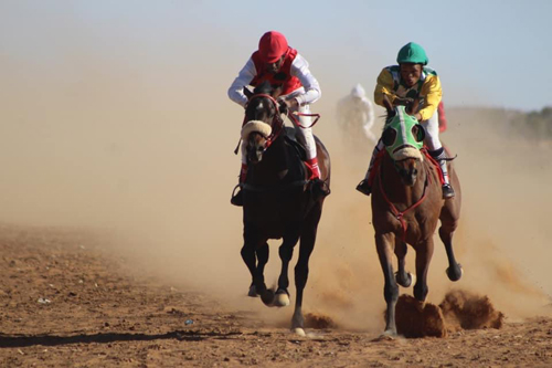 Horse racing AGM set for next month