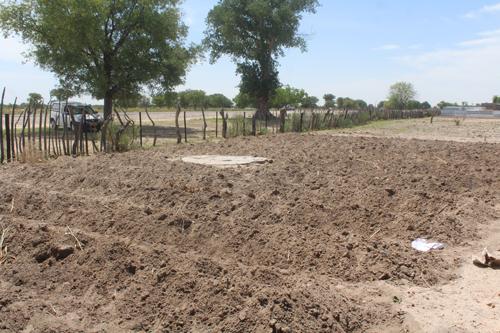 More govt tractors needed to plough