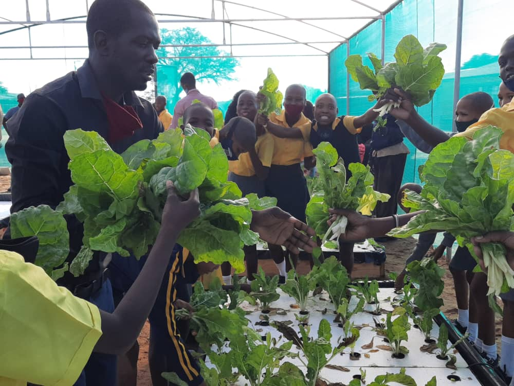 Omaheke diversifies into crop farming