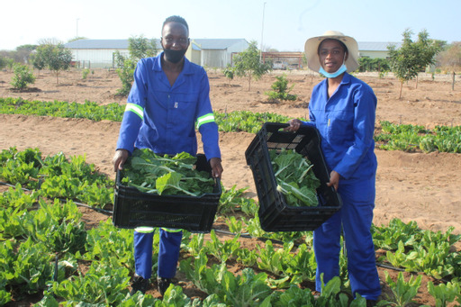 Agriculture training blooms at RVTC